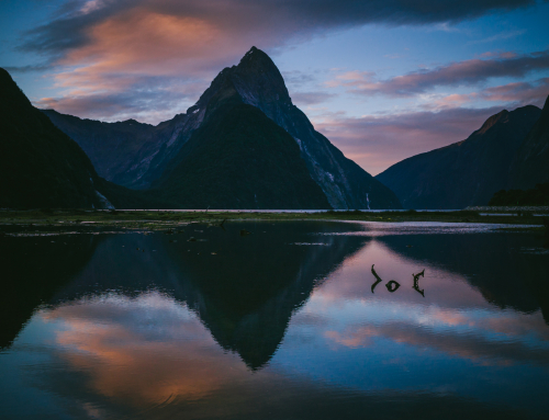 Your Guide to Travelling New Zealand