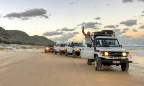 3 Day/2 Night Fraser Island Tag-Along Camping Tour - Dingos