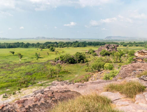Top 5 Destinations: The Northern Territory